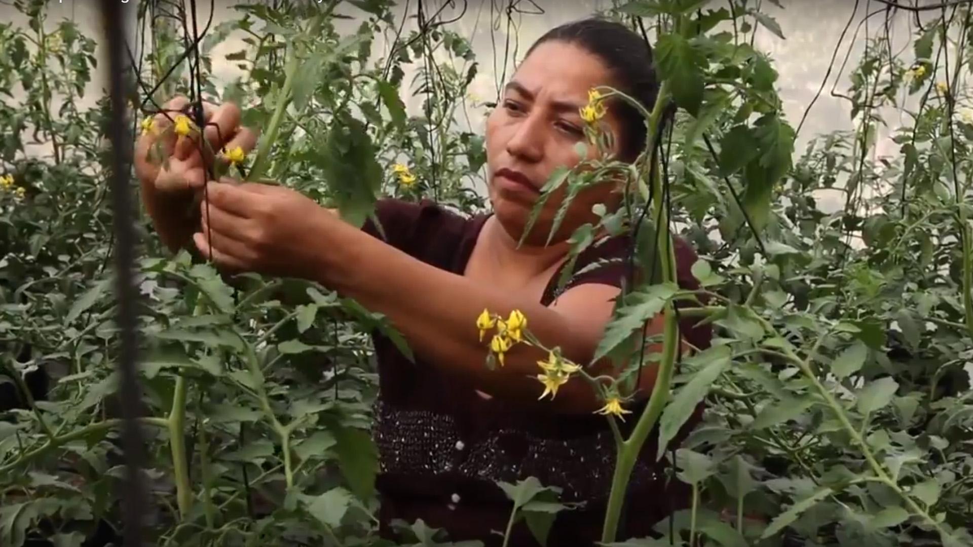 image d'illustration de l'article Retour sur la rencontre avec la délégation du Salvador (vidéo)